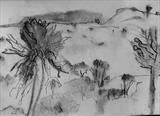 Borana by judith cockram, Drawing, Charcoal on Paper