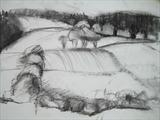 Dartmoor 1 by judith cockram, Drawing, Charcoal on Paper
