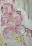Roses 2 by judith cockram, Painting, Oil on Board